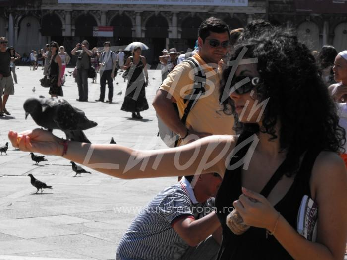 Venetia, Italia - Porumbeii din Piata San Marco