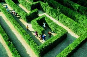 Labirintul Schonbrunn