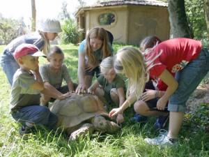 Zoo Salzburg 2