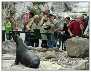 Zoo Schonbrunn Viena